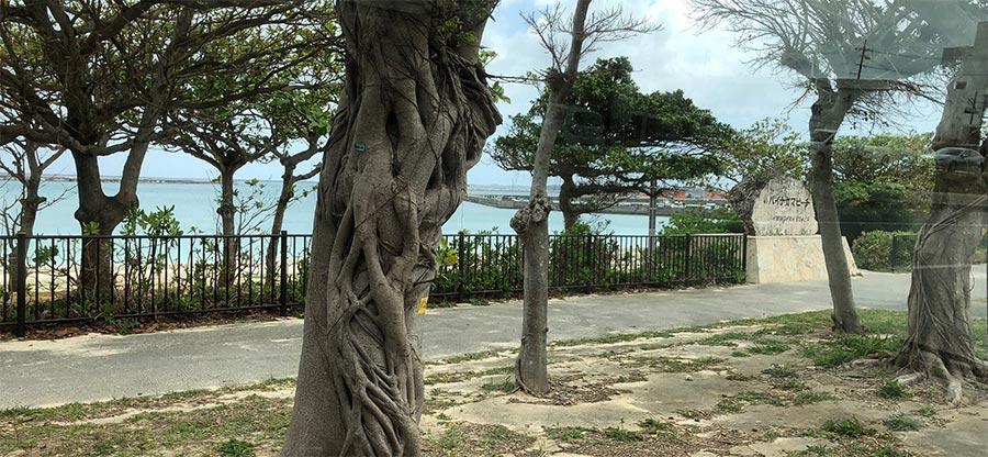 パイナガマビーチの写真