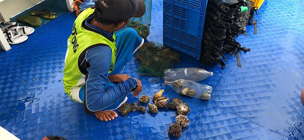 ヒルトゥガン島の住民が船に貝を売りにやってきます。